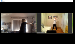 Private Qigong Zoom Class